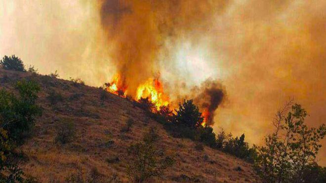 لزوم شناسایی مناطق مستعد آتش سوزی ارسباران