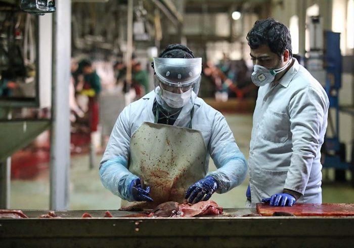 کنترل ۵ مرحله ای در کشتارگاه صنعتی تبریز
